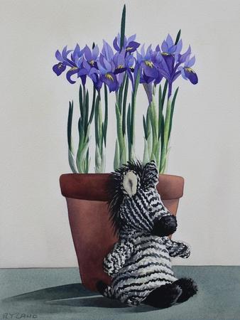 https://imgc.artprintimages.com/img/print/winter-irises-and-zebra_u-l-q1bx6oo0.jpg?p=0