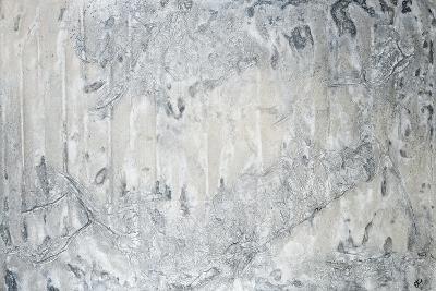 Winter is Coming-Estes Estes-Giclee Print
