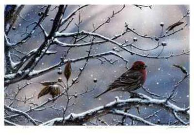 Winter is Upon Us-J. Vanderbrink-Collectable Print