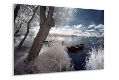 Winter Lake--Metal Wall Art