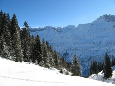 Winter Landscape (Winter in Swiss Alps)-swisshippo-Photographic Print