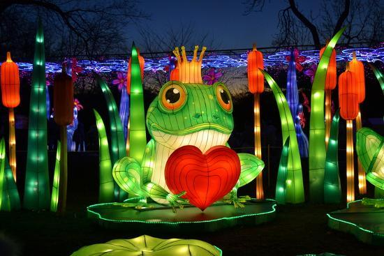 Winter Lantern Festival, Frog and Heart, 2018-Anthony Butera-Photographic Print