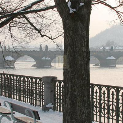 Winter Light II-Bill Philip-Art Print