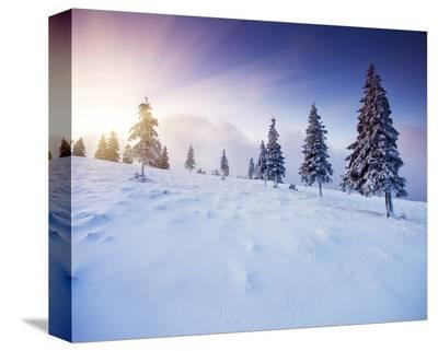 Winter Mountains Sunset--Stretched Canvas Print