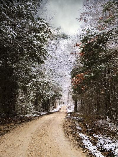 Winter Paradise-Jai Johnson-Photographic Print