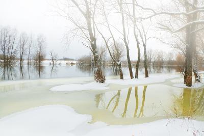 Winter River- Andrejkoslav-Photographic Print