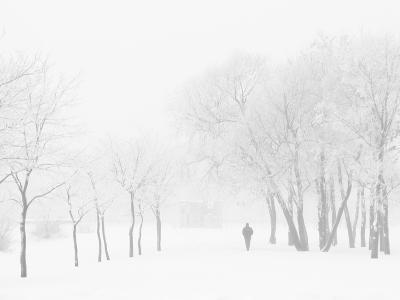 Winter, Saint Petersburg, Russia-Nadia Isakova-Photographic Print