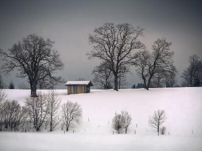 Winter Scene, Hill and Trees, Hut and Foreboding Sky-Sheila Haddad-Photographic Print