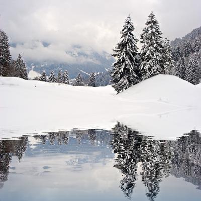 Winter Scene-ajn-Photographic Print