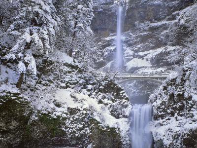 Winter Scenic at Multnomah Falls, Columbia River Gorge, Oregon, USA-Jaynes Gallery-Photographic Print