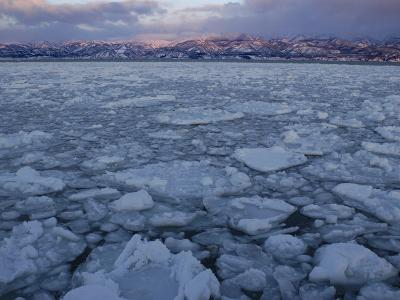 Winter Sea Ice Off Hokkaido Island, Japan-Tom Walker-Photographic Print