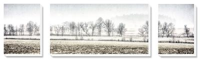 Winter Silence-Todd McPhetridge-Canvas Art Set