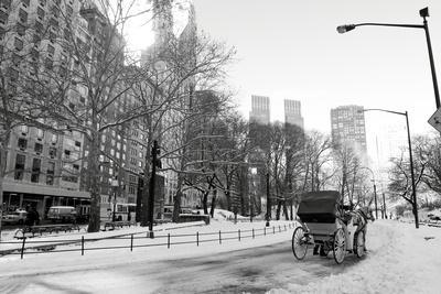 https://imgc.artprintimages.com/img/print/winter-snow-in-central-park-manhattan-new-york-city_u-l-q103cqe0.jpg?p=0