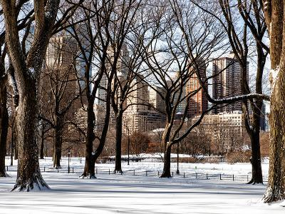 Winter Snow in Central Park View-Philippe Hugonnard-Photographic Print