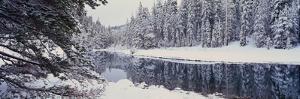 Winter Snowstorm in the Lake Tahoe Area, California