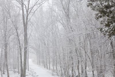 https://imgc.artprintimages.com/img/print/winter-snowstorm-on-manassas-national-battlefield-park-s-stone-bridge-trail-in-virginia_u-l-pwdntu0.jpg?p=0