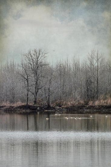 Winter Solitude-Jai Johnson-Giclee Print