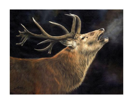 Winter Stag-David Stribbling-Art Print