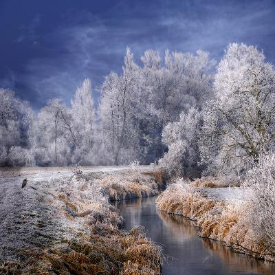 Winter Stream-Philippe Sainte-Laudy-Photographic Print