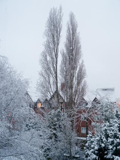 Winter Suburb-Charles Bowman-Photographic Print