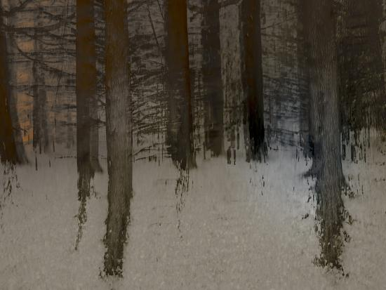 Winter Sunrise-Valda Bailey-Photographic Print