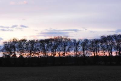 Winter Sunset 2-Alan Hausenflock-Photographic Print