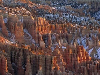 Winter View of Bryce Canyon National Park-Norbert Rosing-Photographic Print