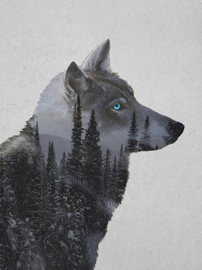 Winter Wolf-Davies Babies-Art Print
