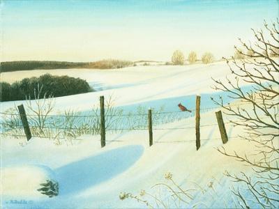 https://imgc.artprintimages.com/img/print/winter-wonderland_u-l-psgl3q0.jpg?p=0