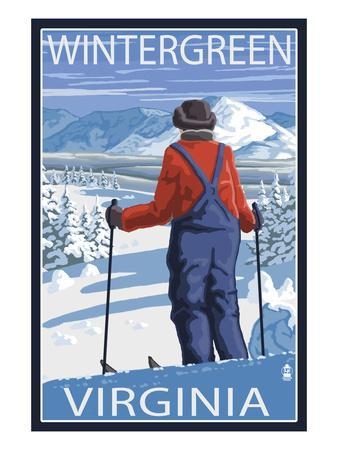 https://imgc.artprintimages.com/img/print/wintergreen-virginia-skier-admiring-view_u-l-q1gpcu80.jpg?p=0