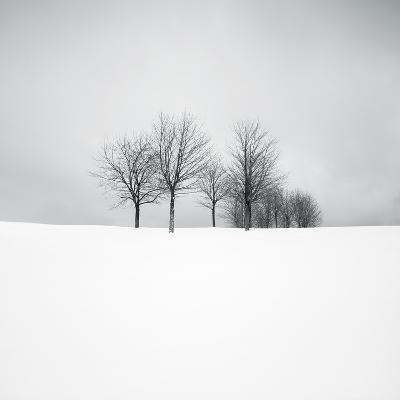 Wintertide-Hakan Strand-Giclee Print