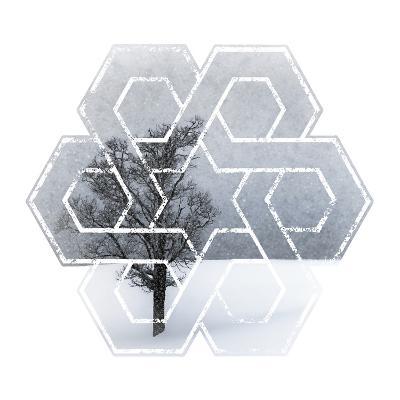 Wintertime Lonely Tree-Melanie Viola-Art Print