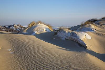 Wintry Dune Landscape Drifting Dune of List on the Island of Sylt in the Evening Light-Uwe Steffens-Photographic Print