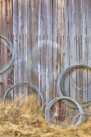Wire Coiled on Barn Wall, Petersen Farm, Silverdale, Washington, USA-Jaynes Gallery-Photographic Print