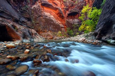 Zion Canyon Narrows by Wirepec