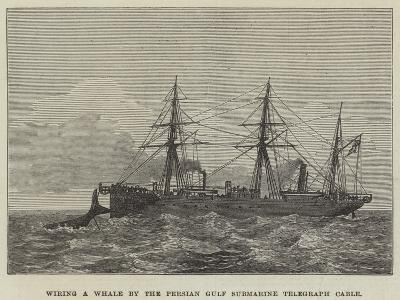 Wiring a Whale by the Persian Gulf Submarine Telegraph Cable--Giclee Print