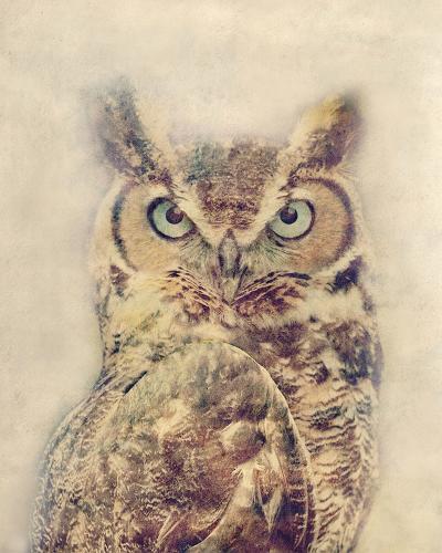 Wise-Midori Greyson-Giclee Print