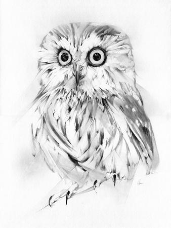 https://imgc.artprintimages.com/img/print/wise_u-l-pqe0950.jpg?p=0