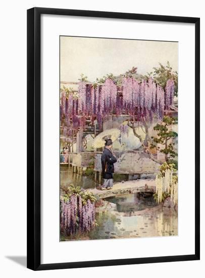 Wistaria, Kabata-Ella Du Cane-Framed Giclee Print