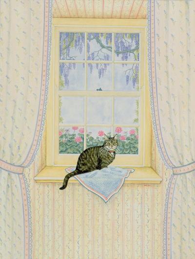 Wisteria Cat-Ditz-Giclee Print