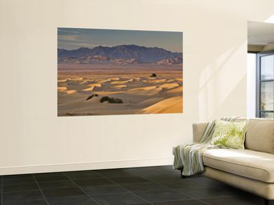 Cadiz Dunes at Sunrise, Sheephole Mountains in Distance in Mojave Desert