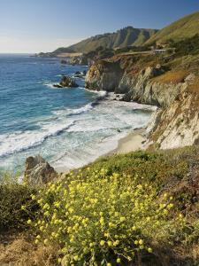 Cliffs Along Big Sur Coastline, Near Rocky Creek Bridge on Highway One by Witold Skrypczak