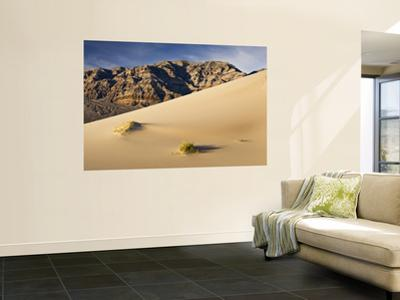 Eureka Sand Dunes with Last Chance Range in Background
