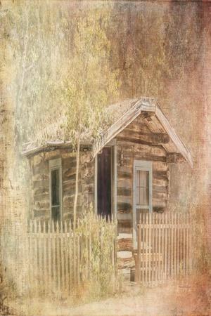 https://imgc.artprintimages.com/img/print/wizards-cabin_u-l-q13ibqp0.jpg?p=0