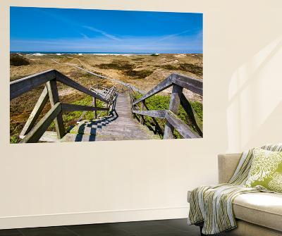 Wodden Path in the Dunes, Amrum Island, Northern Frisia, Schleswig-Holstein, Germany-Sabine Lubenow-Wall Mural
