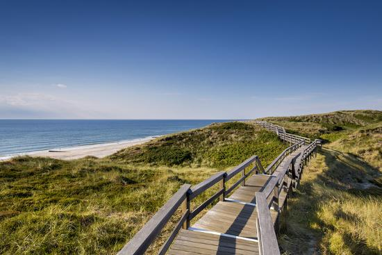 Wodden Path in the Dunes, Wenningstedt, Sylt Island, Northern Frisia, Schleswig-Holstein, Germany-Sabine Lubenow-Photographic Print