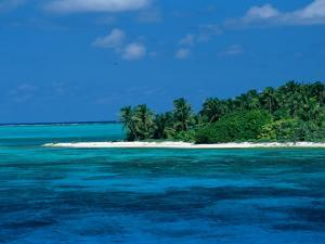 A View of One of the Islands off of the Coast of Belize by Wolcott Henry
