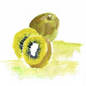 Kiwi by Wolf Heart Illustrations