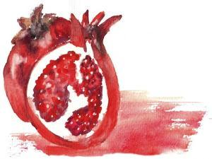 Pomegranate by Wolf Heart Illustrations