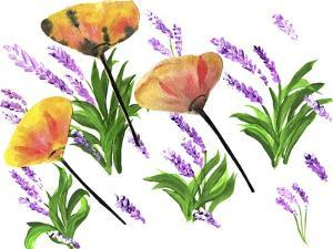 Poppies And Lavender by Wolf Heart Illustrations